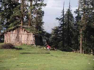 Gujars' hut
